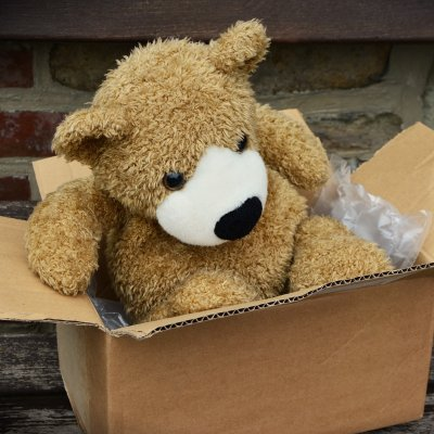 A small brown teddy bear sat in an open cardboard box